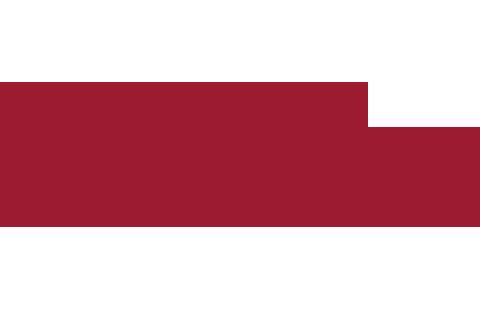 Southern Strategy Group logo
