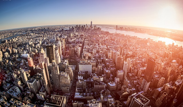 This Week in New York City Government - Capalino + Company