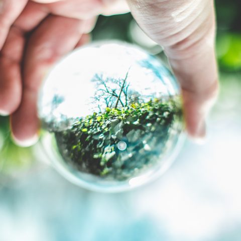 Looking Ahead: 2019 Through a Climate and Energy Lens